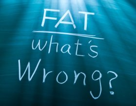 fat-whats-wrong-